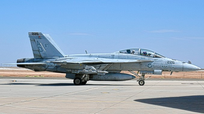 VFA-106 F/A-18F Super Hornet Bird Strike
