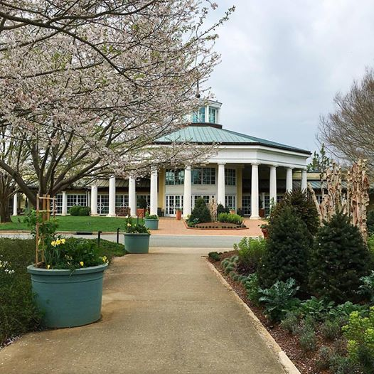 Let there be flowers | Daniel Stowe Botanical Gardens
