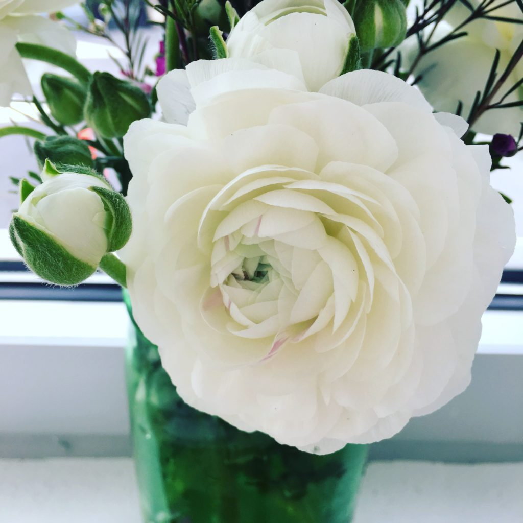 There were lovely arrangements of Ranunculus in the classroom for the Ribbon Needlepoint Class. Check out this close up!