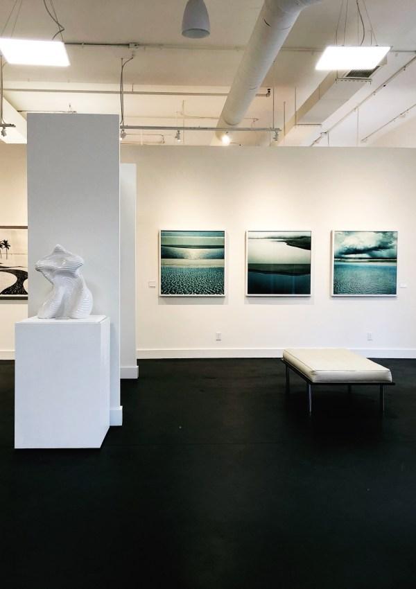Through the Lens | Anne Neilson Fine Art Gallery
