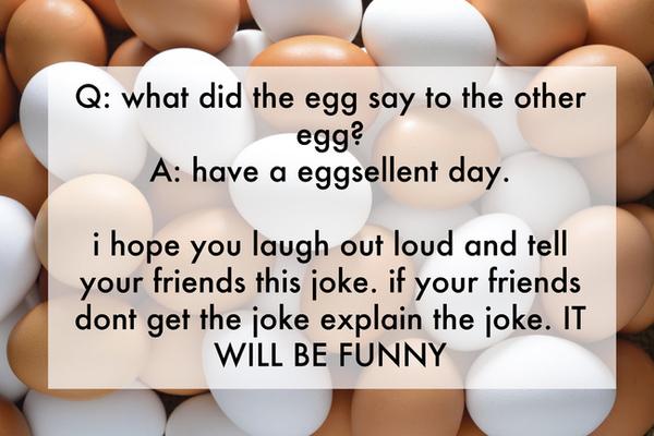 Funniest Jokes Tell Your Friends