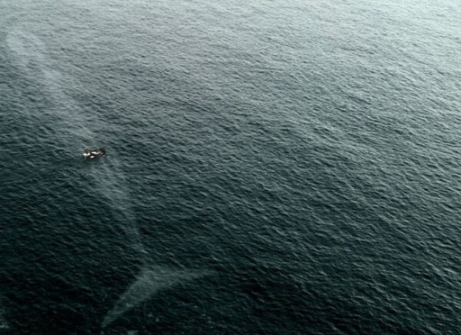 do you fear the sea? 15