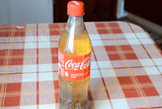 coke and milk 5 (1)