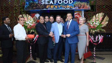 Fresh Seafood Festival
