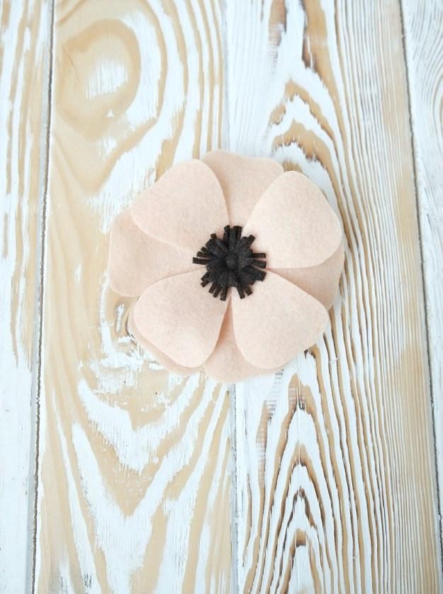 anemone-ready-fetr1