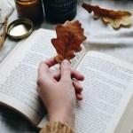 Читальный клуб: 10 лучших книг, которые я прочла в 2014-ом