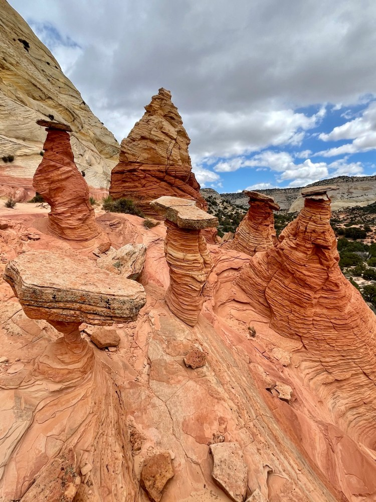 A new up close of the hoodoos we got to with our tour guide