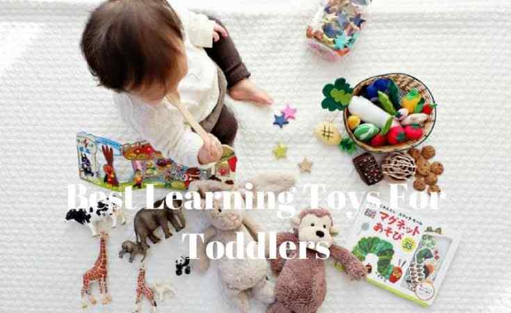 Best Learning Toys For Toddlers