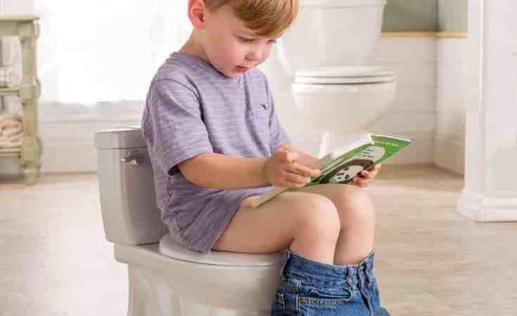 summer infant my size potty