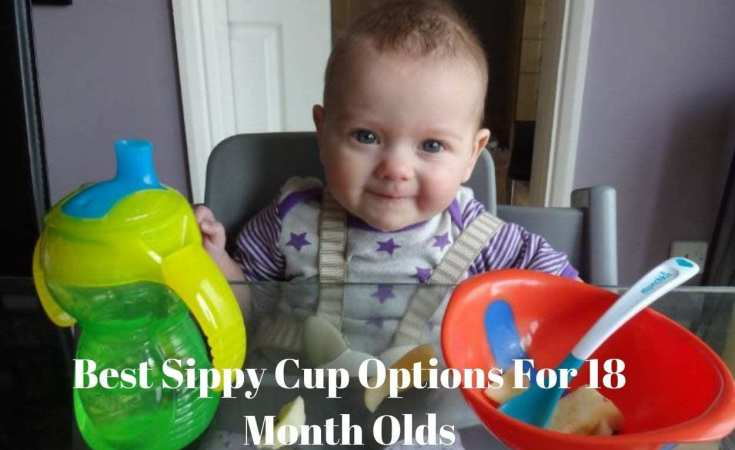 Best Sippy Cup Options For 18 Month Olds