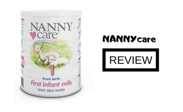 nannycare review
