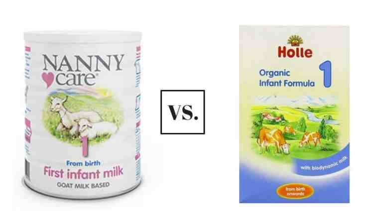 nannycare vs holle