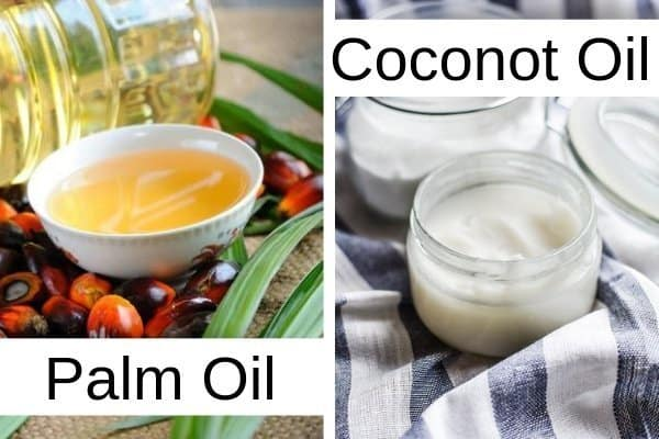 Palm Oil vs Coconot Oil