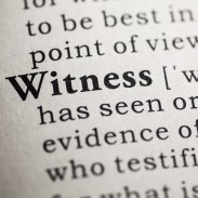What if….I were a Witness to Life?