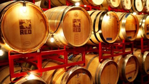 Amazing Wineries of Woodinville Washington You Shouldn't Miss!