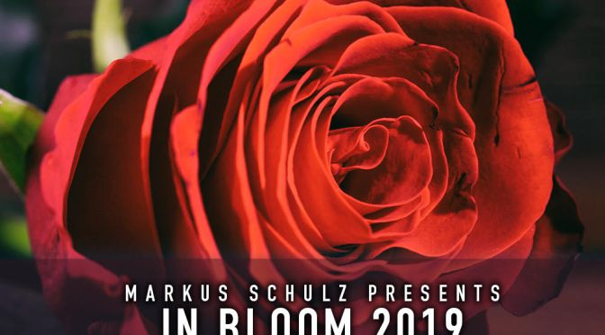MARKUS SCHULZ'S IN BLOOM 2019  ARRIVES ON SPOTIFY