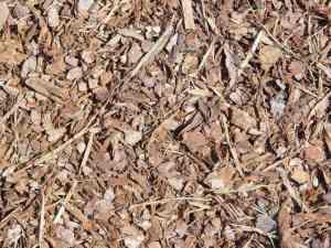 cedar natural mulch for dogs