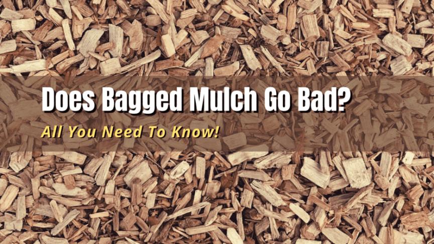 does mulch go bad