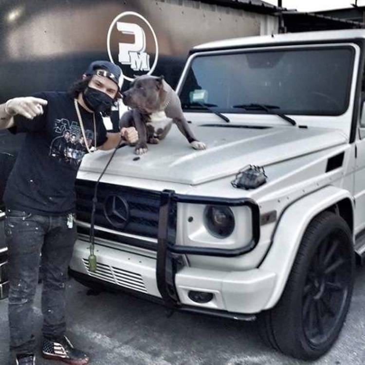 Badchix Celebrity and their cars 6