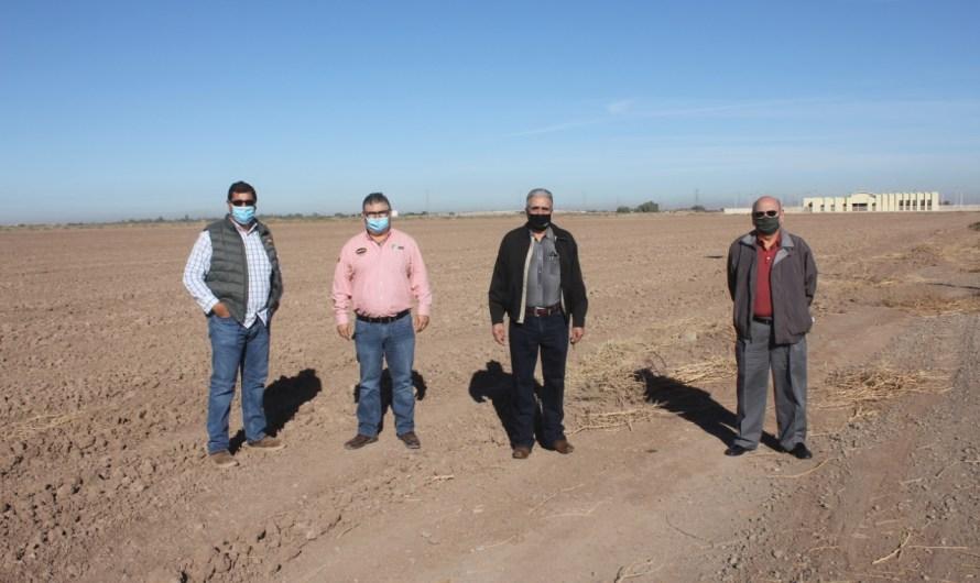 «Restaurará Secretaría de Agricultura campos experimentales del Ejido Sinaloa»: Polo Gonzalez