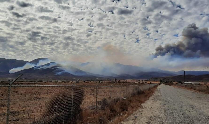 Combate incendios forestales en Tijuana y Tecate Protección Civil del Estado, coordinada con Municipios y Federación