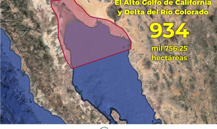 Podrían reducir el polígono de veda para.pesca en Alto Golfo: Ruiz Uribe
