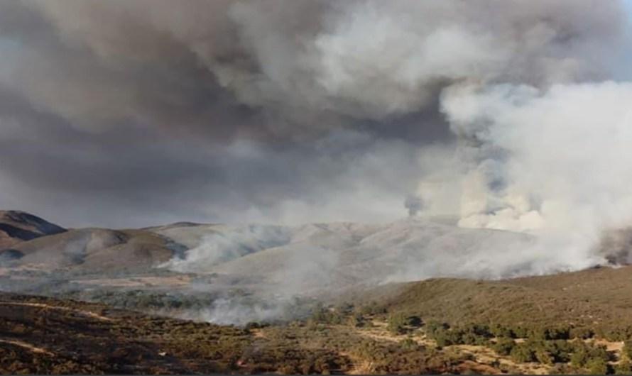 Combate el centro Estatal de Manejo del Fuego de Baja California incendio en Rancho Bakarta