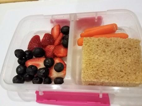 Tuna sandwich, baby carrots, and fruit