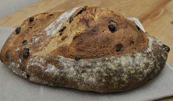 Whole Wheat and Raisin Batard