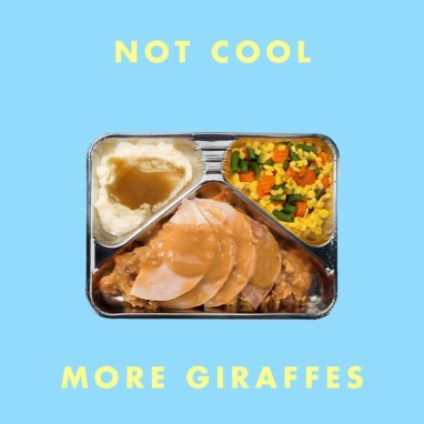 More Giraffes | Not Cool