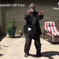 Tai Qi: Separate Left Foot