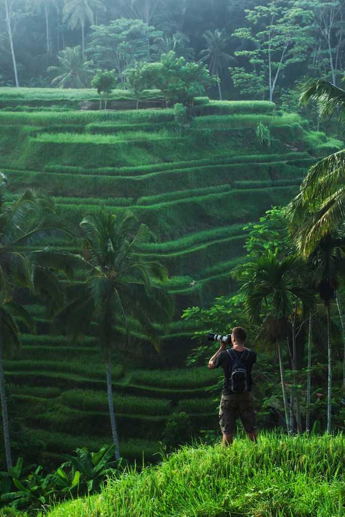 Bali rice field terrace (1)