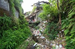 Bali Village Collects 1.7 Tons of Plastic Garbage In Exchange For Rice Program