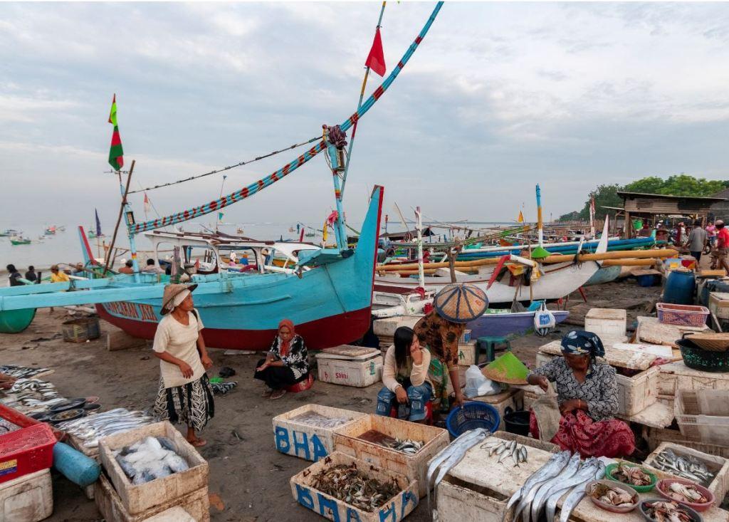 fish market bali