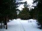 20130326-Snow-Paths-03