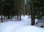 20130326-Snow-Paths-07