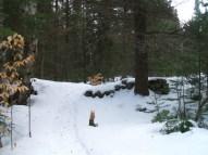20130326-Snow-Paths-14