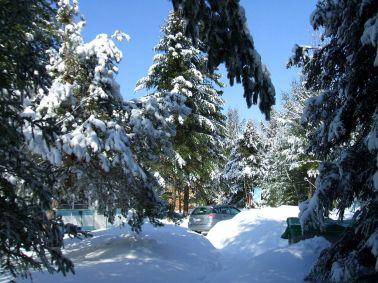 phss6-11-20070303 Sunny Morning After Snow 3