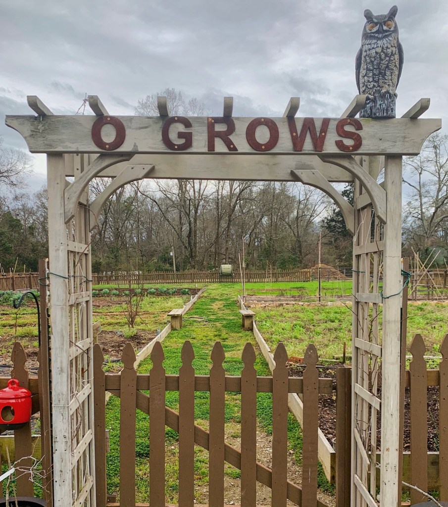 Ogrows Cropped