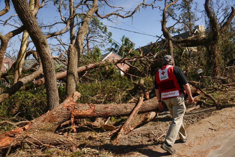 After Michael Cima Gulf Coast Hurricane Season 2021, Hurricane Prep, Hurricane Preparedness, Hurricane Season, Prep For Hurricanes