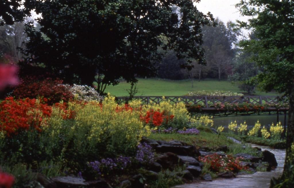 Bridge Over Mirror Lake At Bellingrath Gardens And Home