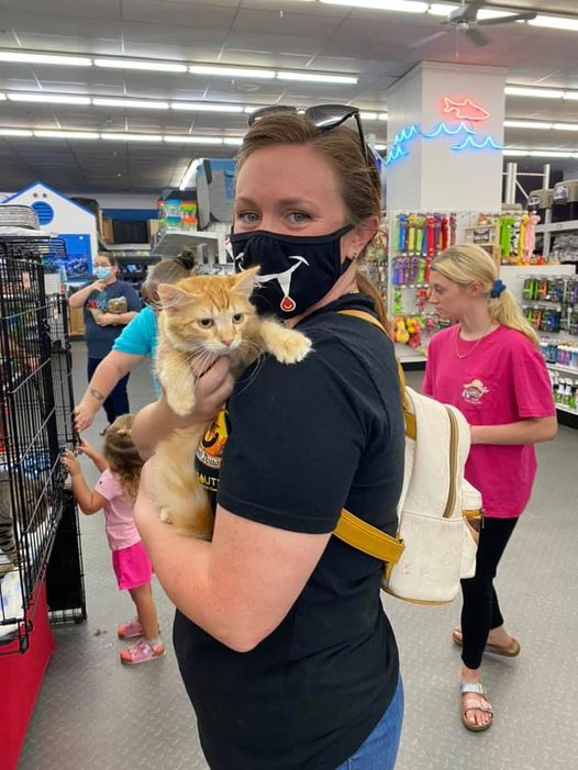 Adopt A Pet In Mobile