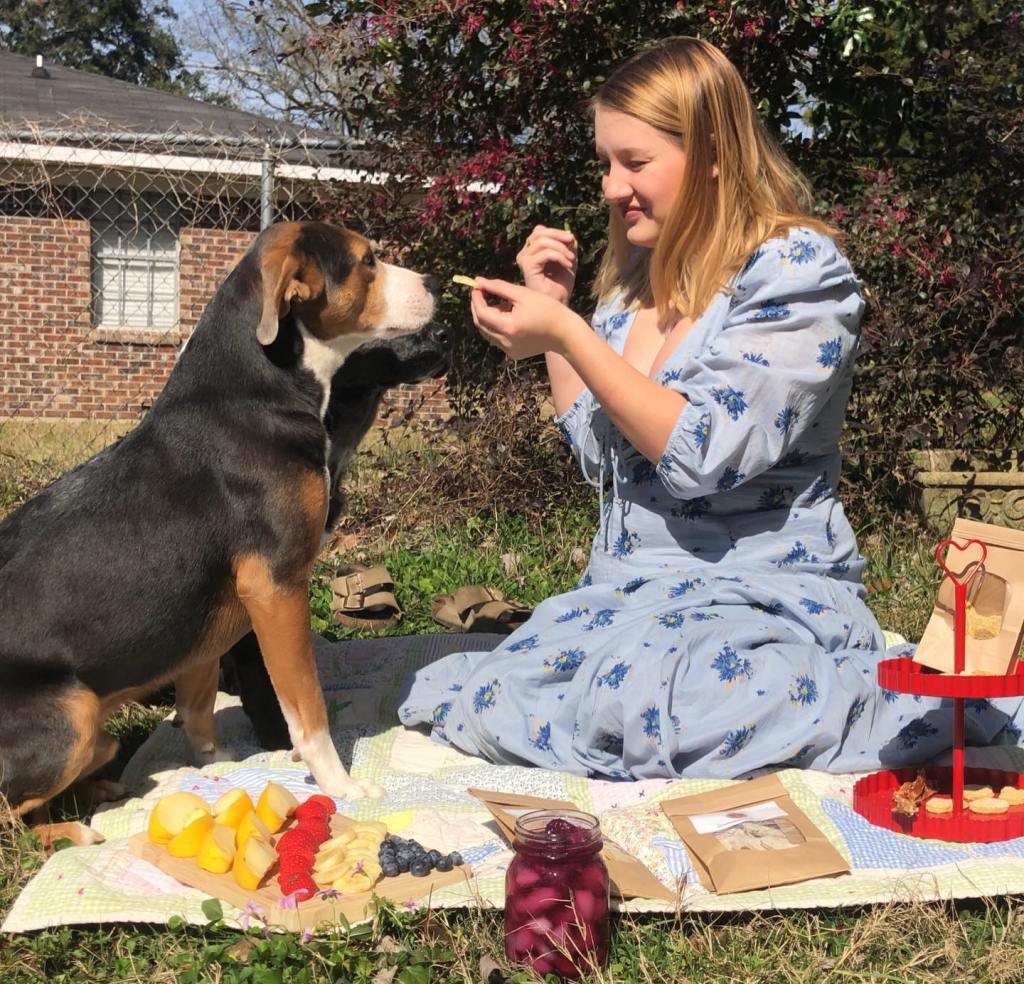 A Girl Sits In Able Dress On A Picnic Blanket Feeding A Large Black And Brown Dog Some Treats