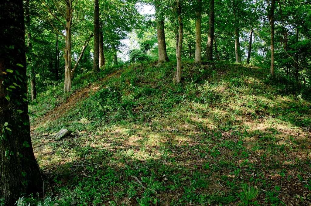 Nature At Chickasaw Indian Mound.