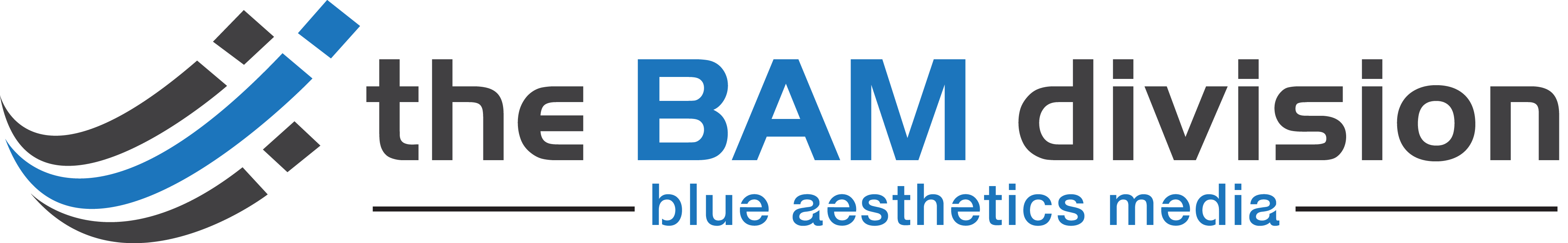 the bam division | blue aesthetics media | tx-based digital marketing