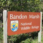 marsh sign