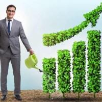 ESG im Banking: Implementierung von ESG in einer Bank