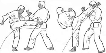 How to Roundhouse Kick