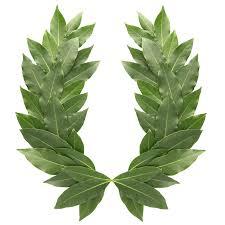 resting_on_your_laurels_literal_laurel_wreath_ancient_greece