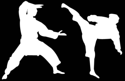 4 Signs Your Martial Arts School Sucks (ROK)